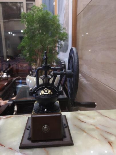 帝国(Diguo) 比利时咖啡壶酒精灯虹吸壶虹吸式咖啡机磨豆机煮咖啡机商用礼盒套装 金色+磨豆机 晒单图