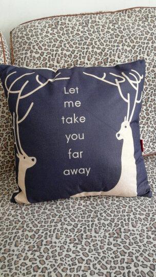 九洲鹿家纺 卡通亚麻风格抱枕沙发靠垫办公室靠枕床头靠背汽车腰靠垫腰枕垫 含芯 双鹿 45x45cm 晒单图