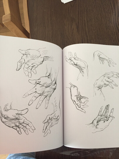 伯里曼人体结构绘画教学(白金版) 晒单图