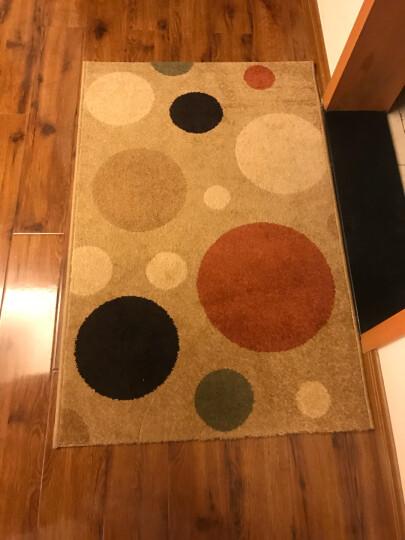 丽家地毯 客厅卧室茶几沙发餐厅简约防滑地毯 米奇5255Y 80*120cm 晒单图
