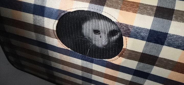 宠物猫包狗包猫袋狗狗猫咪背包单肩便携包外出多款式可折叠 粉色千鸟格 大号12斤内宠物 晒单图