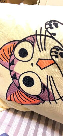 九洲鹿家纺 卡通亚麻风格抱枕沙发靠垫办公室靠枕床头靠背汽车腰靠垫腰枕垫 含芯 可爱猫 45x45cm 晒单图