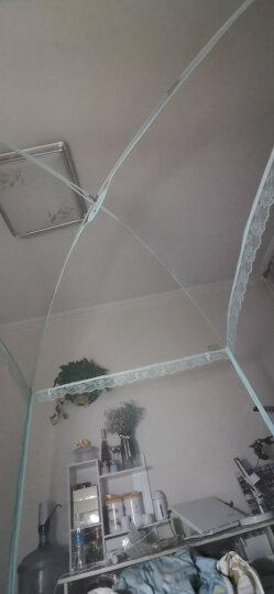 九洲鹿 蚊帐家纺 三开门升级版蕾丝花边拉链双人有底蒙古包蚊帐 可挂风扇 1.5米床 晒单图