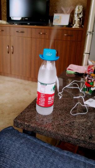 虹之晨(HZCECO-HOPE) USB加湿器迷你矿泉水瓶盖静音家办公便携小型空气加湿器 猫咪白(标配) 晒单图