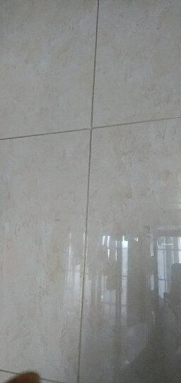 缝皇 瓷砖美缝剂双组份真瓷填缝剂勾缝剂美瓷胶卫生间防水防霉客厅地砖墙砖进口料水性环保净味美缝十大品牌 瓷白色(耐黄变-防霉升级送工具) 晒单图