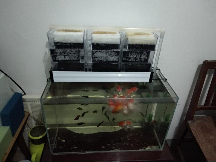信友水族箱鱼缸黑色生化棉蜂窝过滤棉过滤器槽耐洗炭化海绵培养繁殖硝化细菌鱼池过滤网 黑色100*100*3cm大孔 晒单图