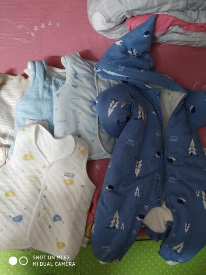 童泰婴儿衣服新生儿宝宝加厚保暖内衣套装秋冬装3个月-3岁 黄色 73码(6-12个月) 晒单图