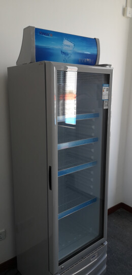星星(XINGX) 236升 立式冷柜 防凝雾玻璃门 陈列柜 饮料柜 商用冷藏冰箱(银灰色) LSC-236C 晒单图
