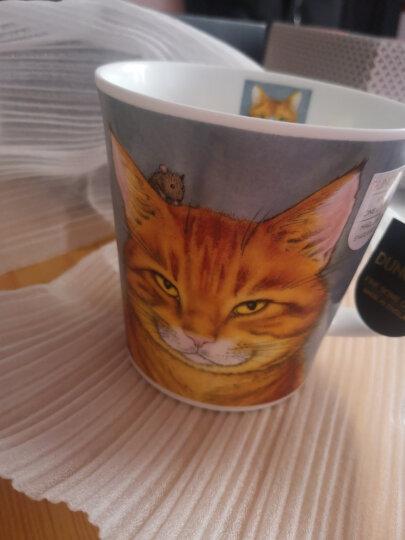 丹侬(dunoon) 英国进口杯子 咖啡杯马克杯陶瓷杯情侣杯杯子创意骨瓷杯 喵星人 喵星人-橘猫 晒单图