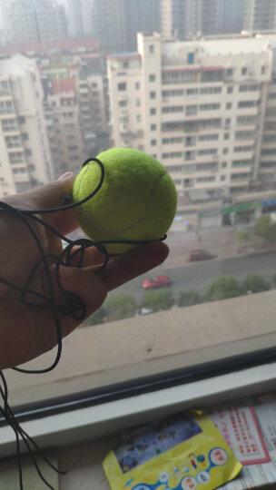 克洛斯威带绳网球905初级皮筋单人训练 带线网球  2个 晒单图