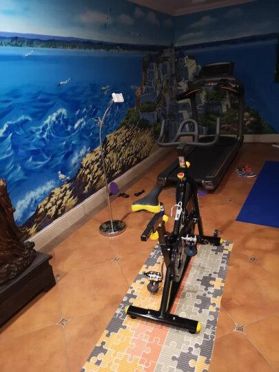 乔山(JOHNSON)动感单车家用健身车 运动单车 室内自行车 健身器材升级新款GR3 晒单图