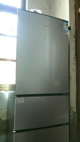 创维(Skyworth)BCD-203T 203升三门冰箱 自动低温补偿 节能静音 家用经济型冰箱(银) 晒单图