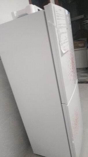 美的(Midea)169升 家用双门冰箱 低温补偿 HIPS环保内胆 时尚外观 母婴小冰箱 BCD-169CM(E) 晒单图