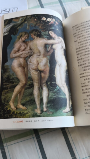 世界美术名作二十讲(全新彩图本) 晒单图