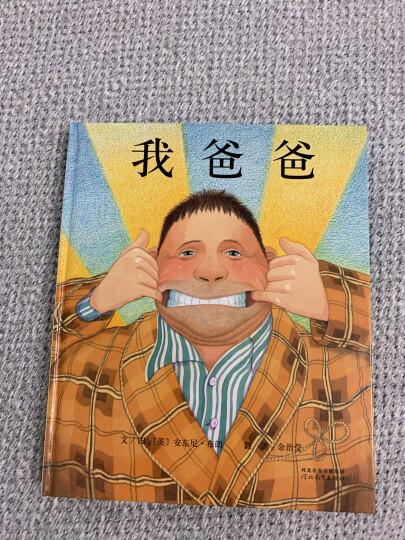 国际绘本大师安东尼·布朗:我哥哥(启发童书馆出品) 晒单图