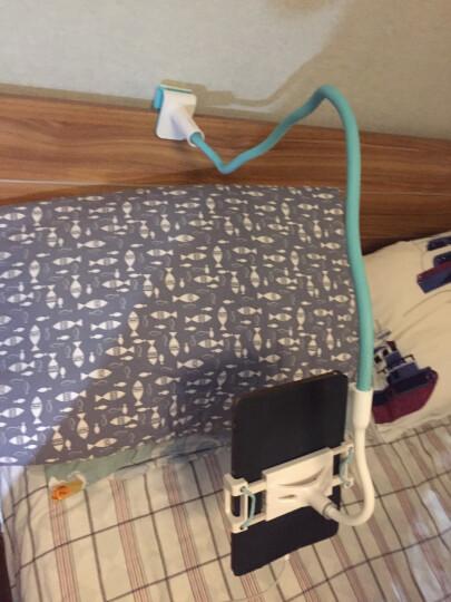 赛鲸 曼陀罗二代加长款 手机平板支架懒人支架 桌面直播 床上床头支架 兼容iPadPro 120CM 银杏黄 晒单图