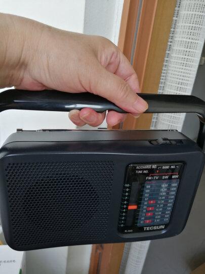 德生(Tecsun)R-305 收音机 音响 老年人半导体 电视伴音 FM调频调频中波/短波 校园广播 便携式 声音大 晒单图