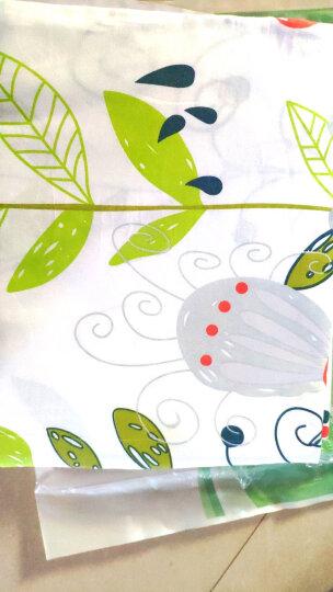 艾薇 床垫套保护罩双人40支纯棉斜纹防滑床笠1.5米床 小清新 150*200*25cm 晒单图
