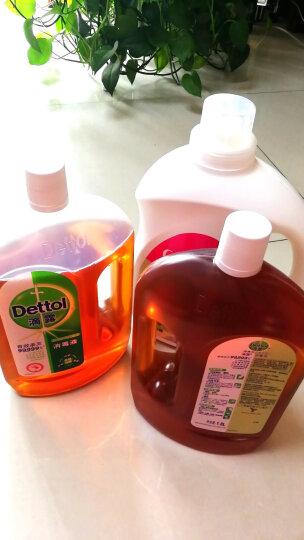 滴露Dettol 消毒液 1.8L*2 杀菌除螨 儿童宝宝内衣 家居室内 宠物环境消毒 消毒水 衣物除菌剂 晒单图