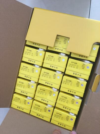 新希望 巧克力牛奶200ml*12盒 礼盒装 晒单图