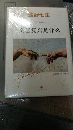 【中信书店】文艺复兴是什么(文艺复兴的故事01) [日]盐野七生 世界史 晒单图
