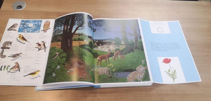 《大自然》三册精装自然类绘本(一天、一年、一条河,时间的节奏,生命的格律) 晒单图