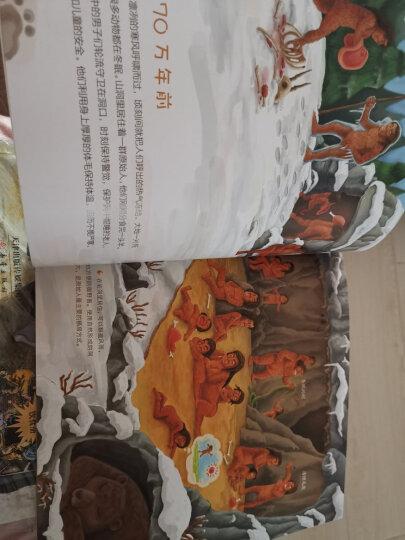 给孩子的生活习惯简史--用七十万年造好床 晒单图