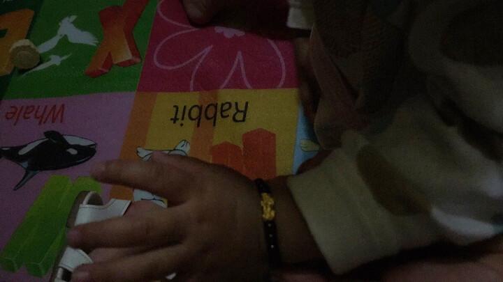 金龙珠宝 黄金手链女款 石榴石貔貅黄金转运珠 3D硬金足金女款金珠路路通手串手镯送礼物情人节 款式四(1个貔貅) 晒单图