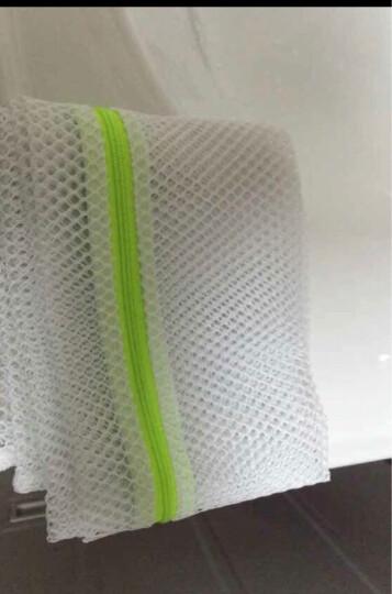 日本丽固(LEC)圆形洗护袋W-286 T恤衬衫裙子洗涤网洗衣机专用洗衣袋网 晒单图