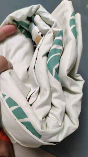 零度探索 LIVTOR 超轻全棉旅行睡袋宾馆酒店隔脏防脏卫生纯棉床单 大白兔 单人加宽120*230(赠固定带) 晒单图