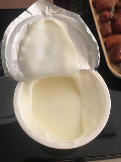 卡士 CLASSY.KISS 活菌酸奶发酵乳200ml*3 晒单图
