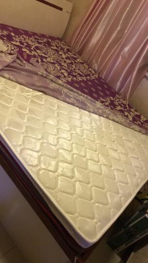 梦雅园 床垫棕垫 椰棕薄硬天然棕榈可折叠3E椰梦维单人双人床垫子 天然椰棕 针织面料 5cm厚 60cm*120cm 晒单图