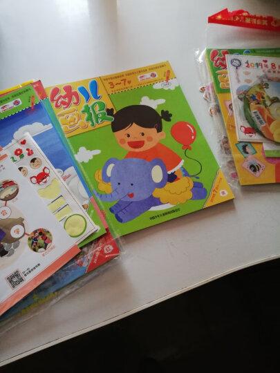 红袋鼠幼儿画报杂志2019年6-9月12本打包亲子阅读3-7岁早教益智绘本故事书籍带光盘贴纸 晒单图
