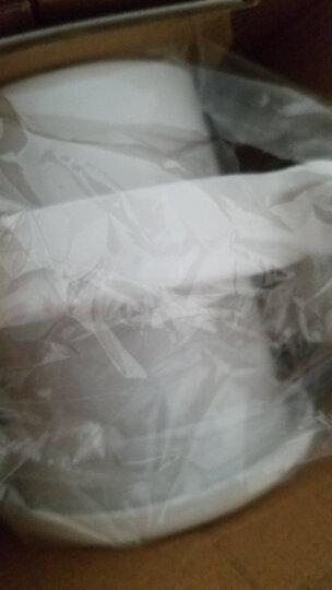 洁能 一次性卫生手套 100只装 厨房清洁食品用餐手套 JN227 晒单图