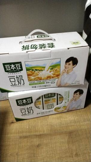 豆本豆 原味豆奶 植物蛋白饮料 早餐奶 250ml*15盒 整箱装 晒单图