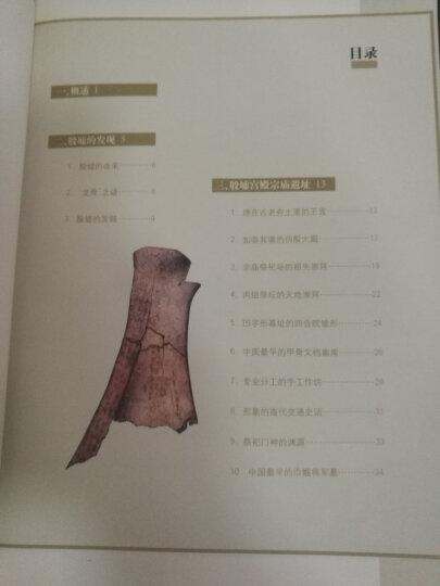 世界遗产丛书:殷墟 晒单图