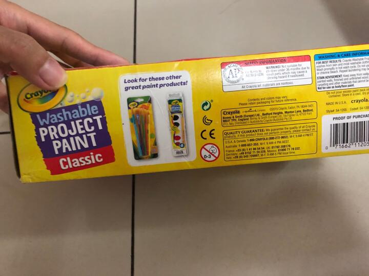 绘儿乐(Crayola)画笔刷5支装  幼儿童专用 美术颜料绘画玩具  涂色工具涂鸦笔 画刷 绘画工具  05-3506 晒单图