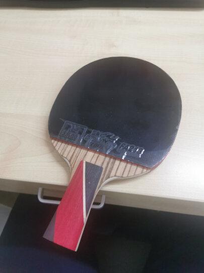 双鱼 乒乓球桌乒乓球台201A 室内家用可折叠带轮兵乓球台乒乓球案子 晒单图