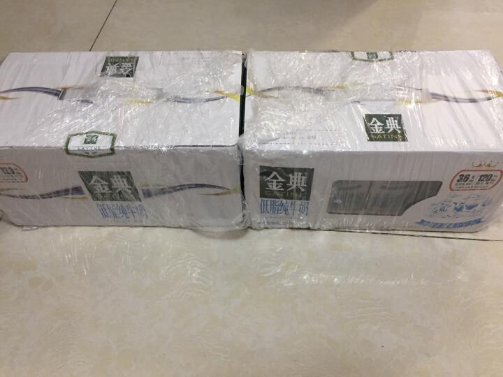 伊利 金典低脂纯牛奶250ml*12盒/礼盒装(王菲推荐) 晒单图