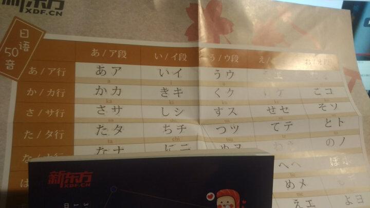 新东方 7天搞定日语50音 五十音 日语字帖 日语单词 日语口语 零基础日语 日语入门 晒单图