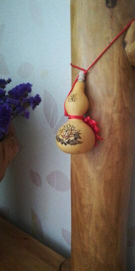聚缘阁天然生长葫芦挂件六字真言小葫芦文玩木葫芦汽车挂件 大号开盖八卦 晒单图