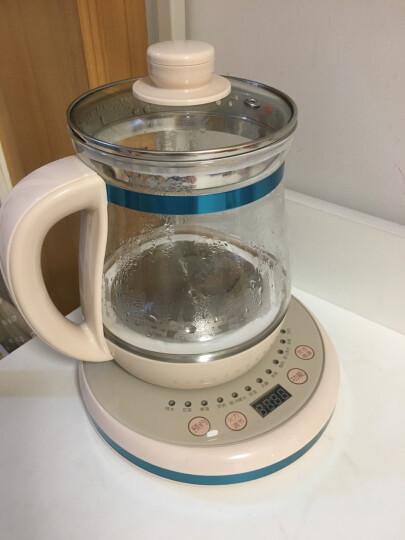 小浣熊养生壶 煮茶壶中药壶电热烧水壶煮茶器养生杯熬药养身茶壶 淡雅粉标准款(1.6L) 晒单图