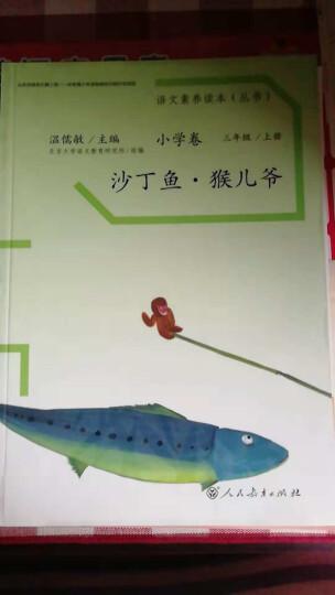 统编语文素养读本 六年级下册 流动在光里的烟 温儒敏主编 晒单图