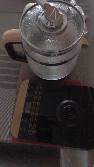 美的(Midea)养生壶电水壶烧水壶热水壶煮茶壶花茶壶电茶壶煮水壶煮茶器1.5L内带滤网WGE1703b(李现推荐) 晒单图