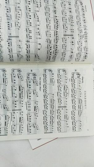 车尔尼钢琴初步教程(作品599)  晒单图