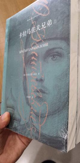 陀思妥耶夫斯基文集:卡拉马佐夫兄弟(套装上下册) 晒单图