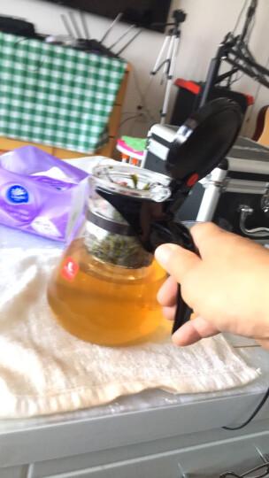 雅集 飘逸杯 玻璃耐热过滤泡茶杯 简易泡茶器茶水分离泡茶壶 晒单图