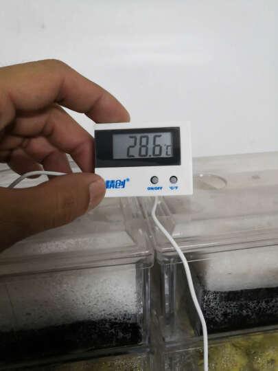 精创鱼缸水族电子数显数字式迷你温度计st-1a养鱼水族箱水温计高精度带探头吸盘 ST-1A 晒单图