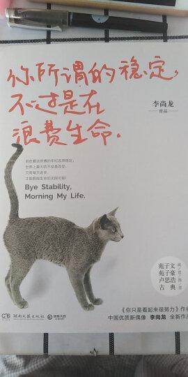 你所谓的稳定,不过是在浪费生命 晒单图