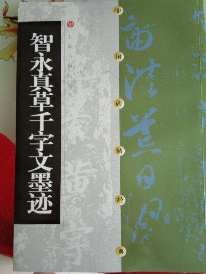中国碑帖经典:智永真草千字文墨迹 晒单图